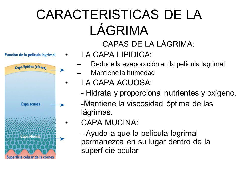 CARACTERISTICAS DE LA LÁGRIMA