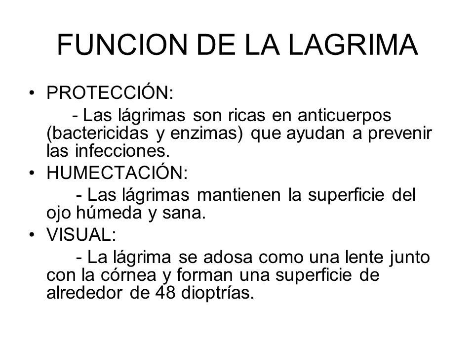 FUNCION DE LA LAGRIMA PROTECCIÓN: