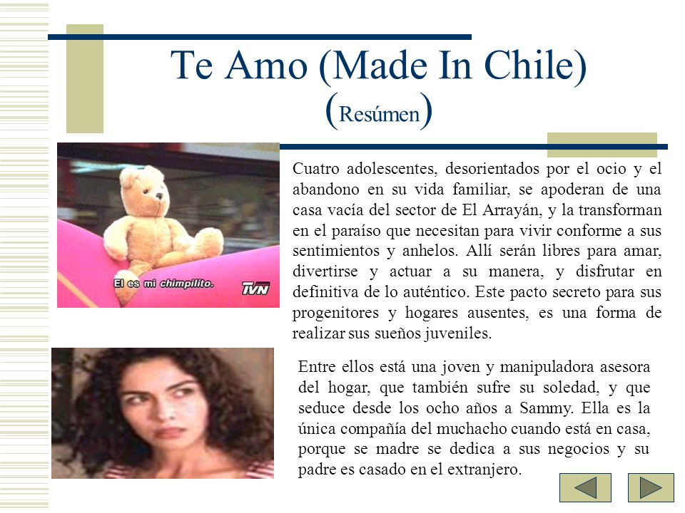 Te Amo (Made In Chile) (Resúmen)