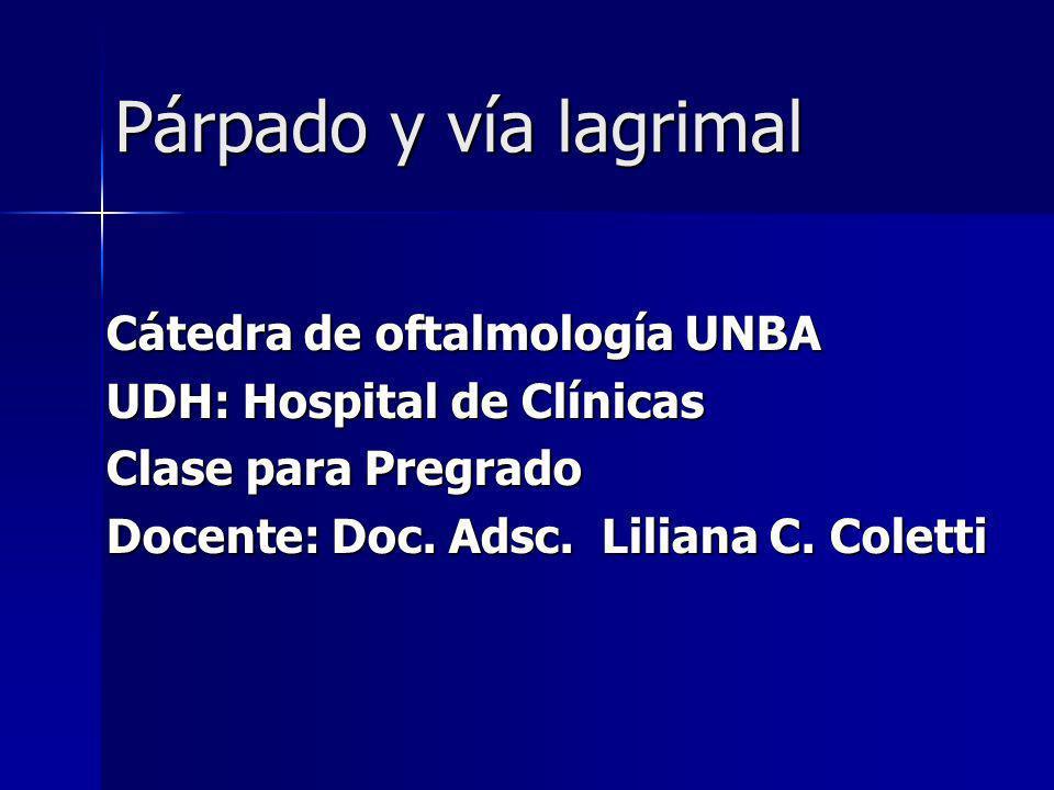 Párpado y vía lagrimal Cátedra de oftalmología UNBA