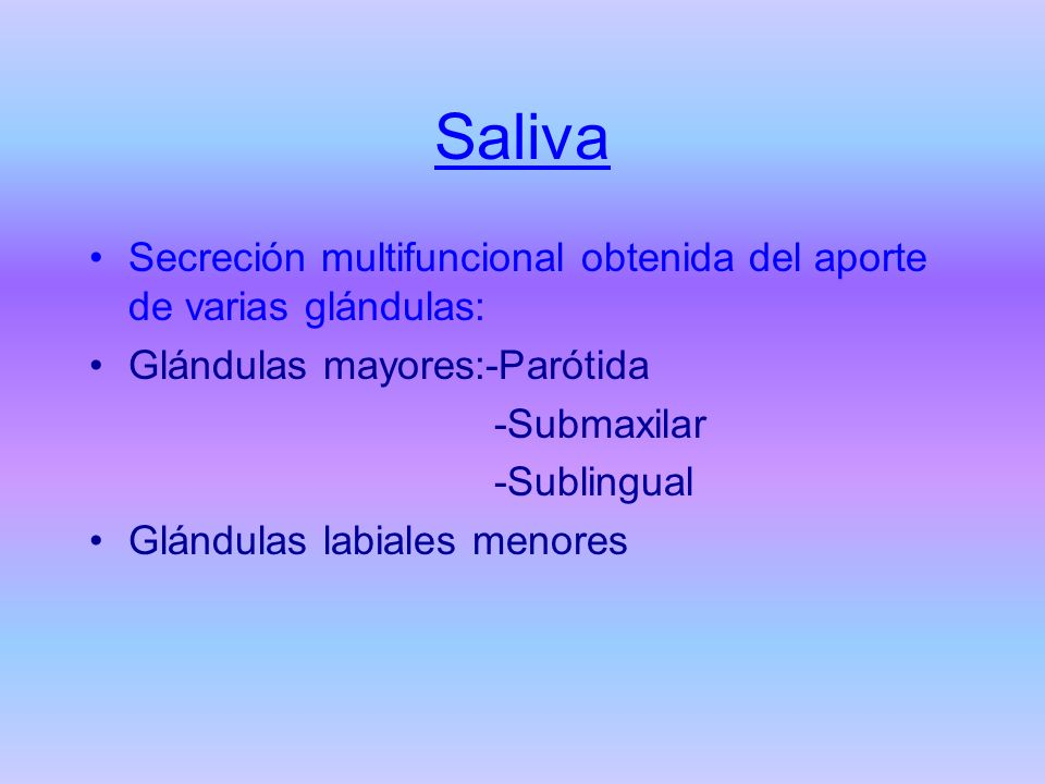 Saliva Secreción multifuncional obtenida del aporte de varias glándulas: Glándulas mayores:-Parótida.