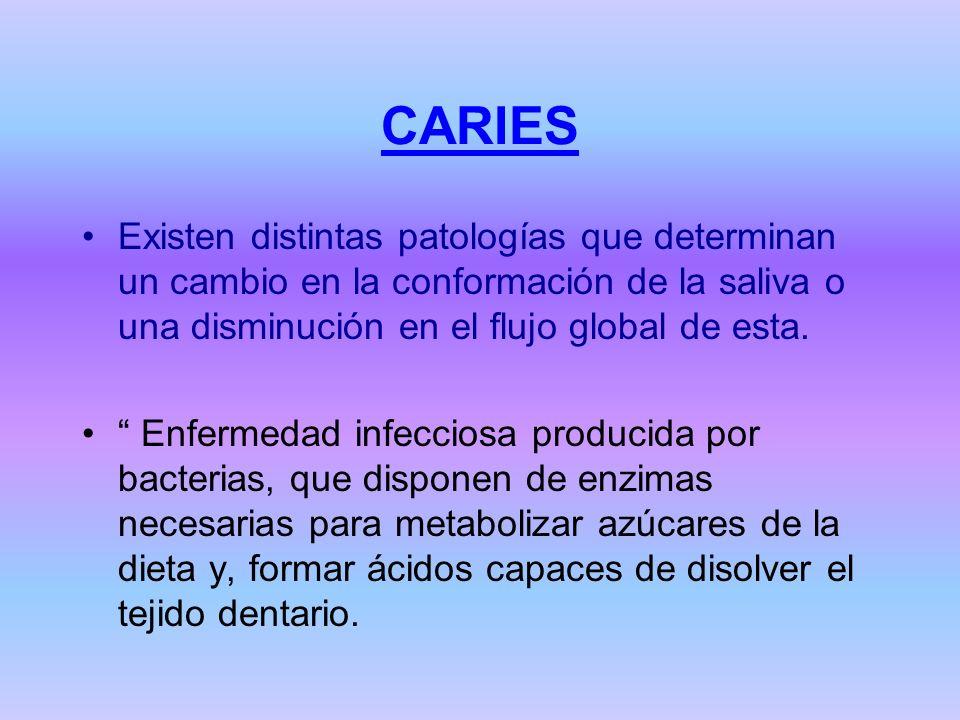 CARIES Existen distintas patologías que determinan un cambio en la conformación de la saliva o una disminución en el flujo global de esta.