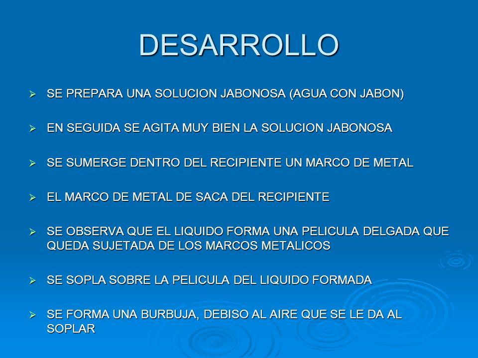 DESARROLLO SE PREPARA UNA SOLUCION JABONOSA (AGUA CON JABON)