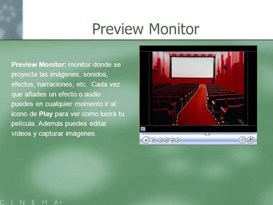 Preview Monitor