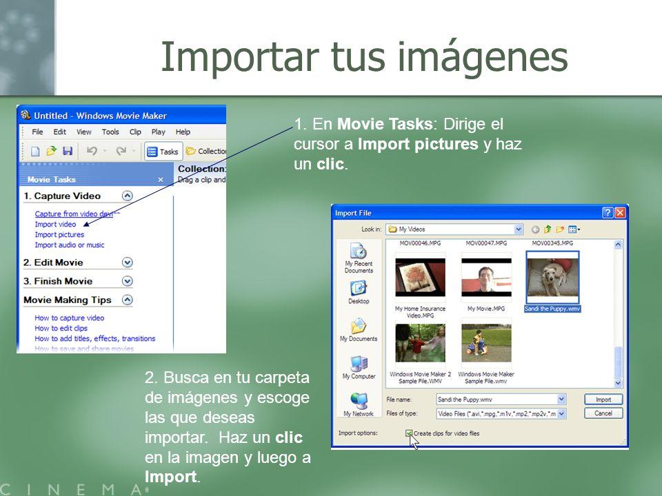 Importar tus imágenes 1. En Movie Tasks: Dirige el cursor a Import pictures y haz un clic.