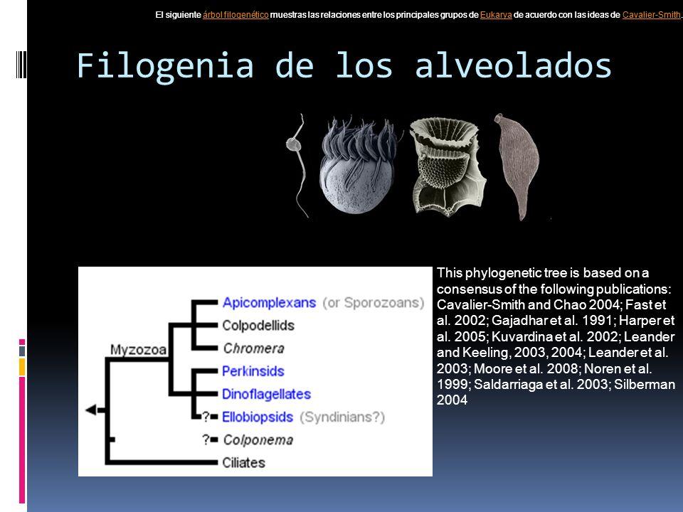 Filogenia de los alveolados