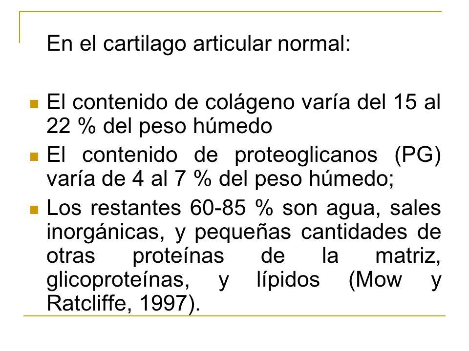 El contenido de colágeno varía del 15 al 22 % del peso húmedo