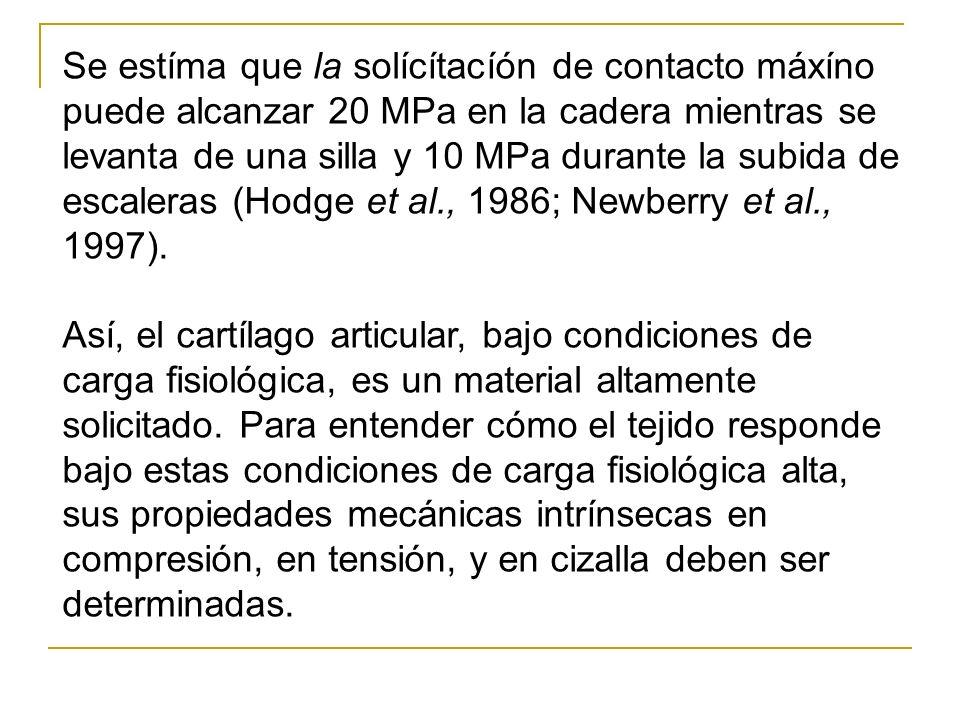 Se estíma que la solícítacíón de contacto máxíno puede alcanzar 20 MPa en la cadera mientras se levanta de una silla y 10 MPa durante la subida de escaleras (Hodge et al., 1986; Newberry et al., 1997).
