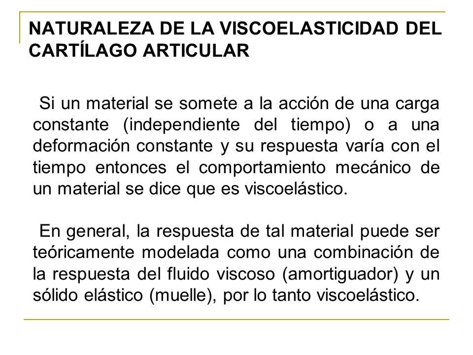 NATURALEZA DE LA VISCOELASTICIDAD DEL CARTÍLAGO ARTICULAR