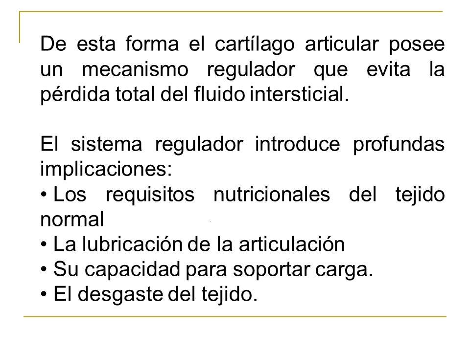 El sistema regulador introduce profundas implicaciones: