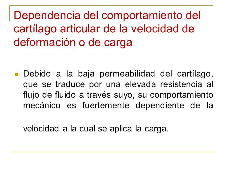 Dependencia del comportamiento del cartílago articular de la velocidad de deformación o de carga