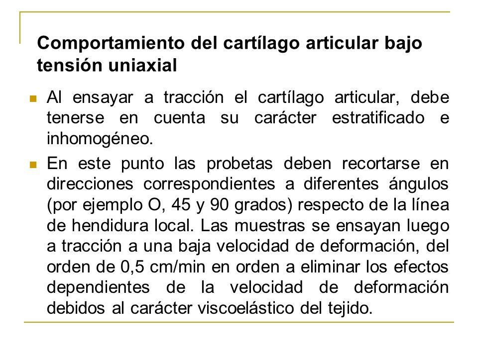 Comportamiento del cartílago articular bajo tensión uniaxial