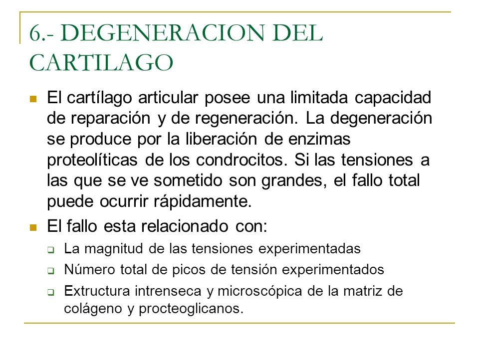 6.- DEGENERACION DEL CARTILAGO