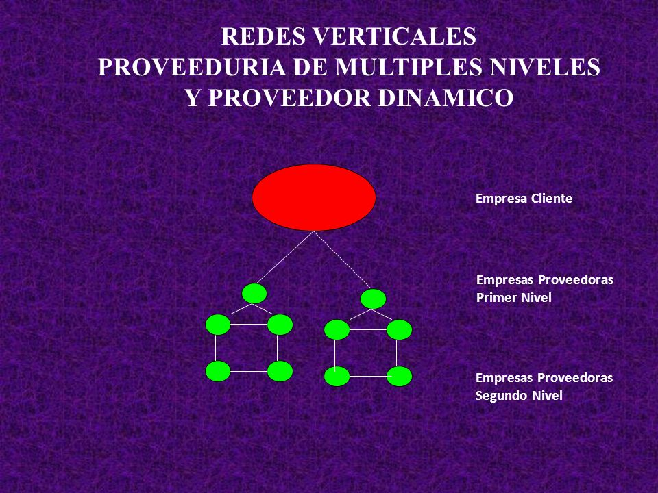 PROVEEDURIA DE MULTIPLES NIVELES