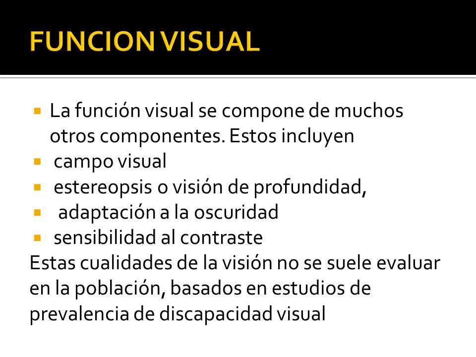 FUNCION VISUAL La función visual se compone de muchos otros componentes. Estos incluyen. campo visual.