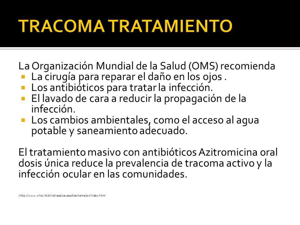 TRACOMA TRATAMIENTO La Organización Mundial de la Salud (OMS) recomienda. La cirugía para reparar el daño en los ojos .