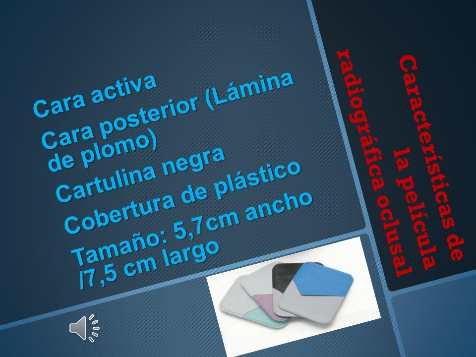 Características de la película radiográfica oclusal