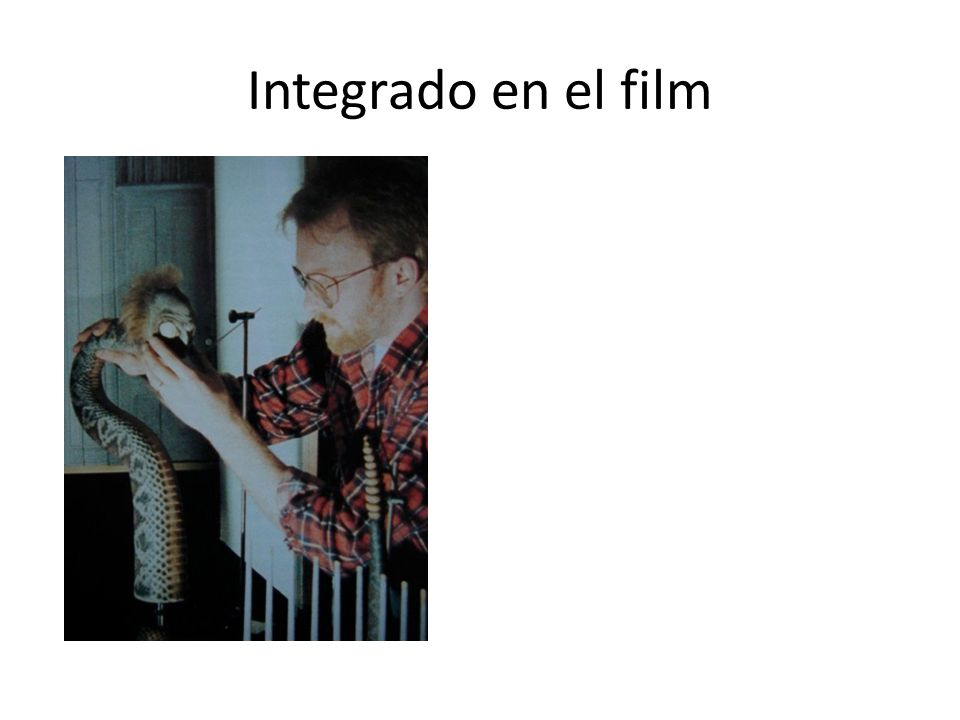 Integrado en el film