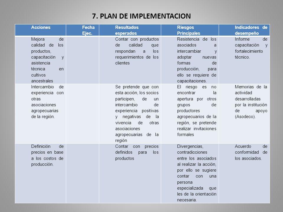7. PLAN DE IMPLEMENTACION