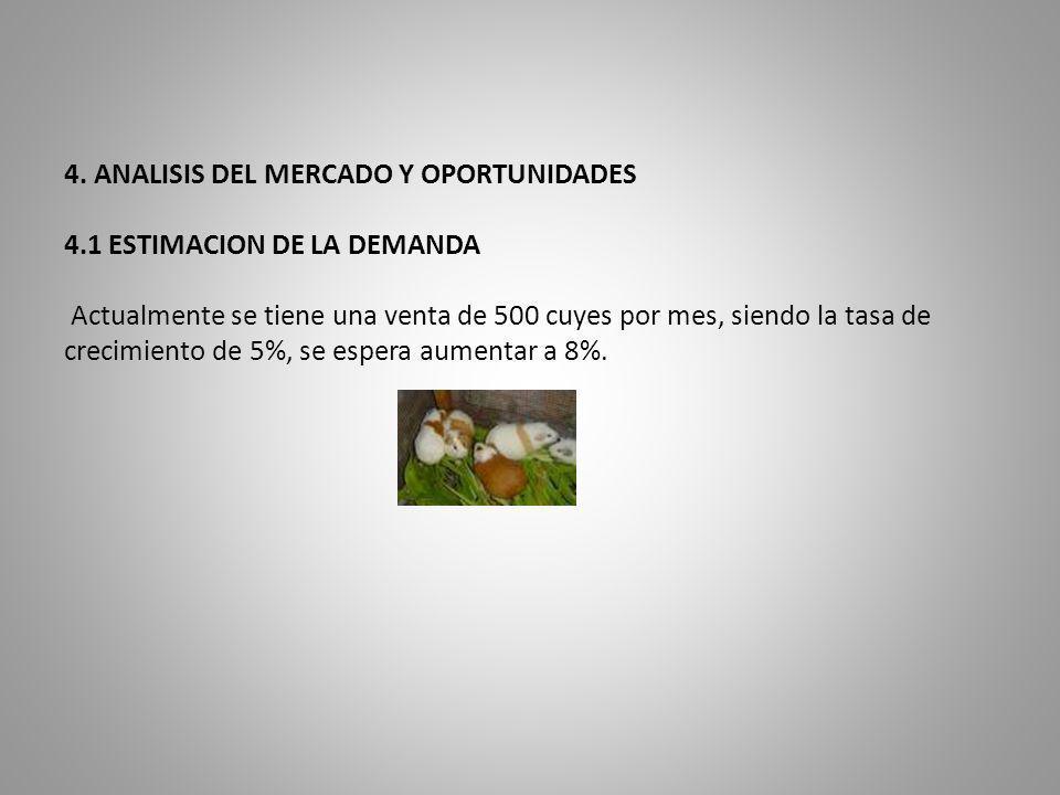 4. ANALISIS DEL MERCADO Y OPORTUNIDADES. 4