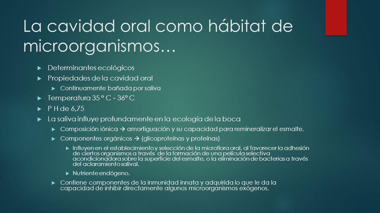 La cavidad oral como hábitat de microorganismos…