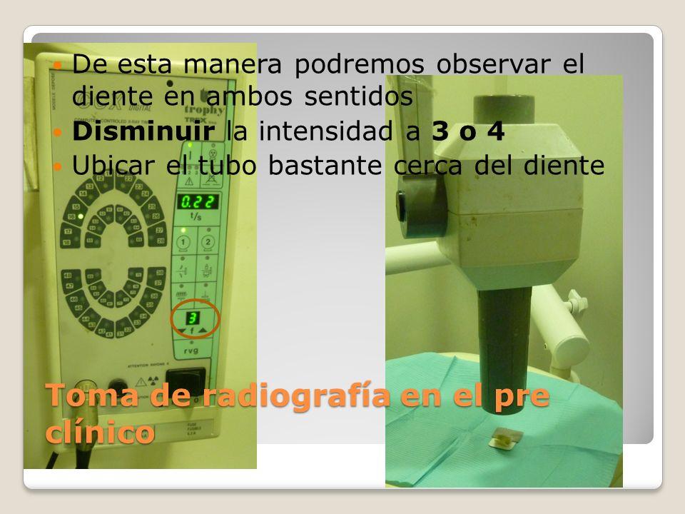 Toma de radiografía en el pre clínico