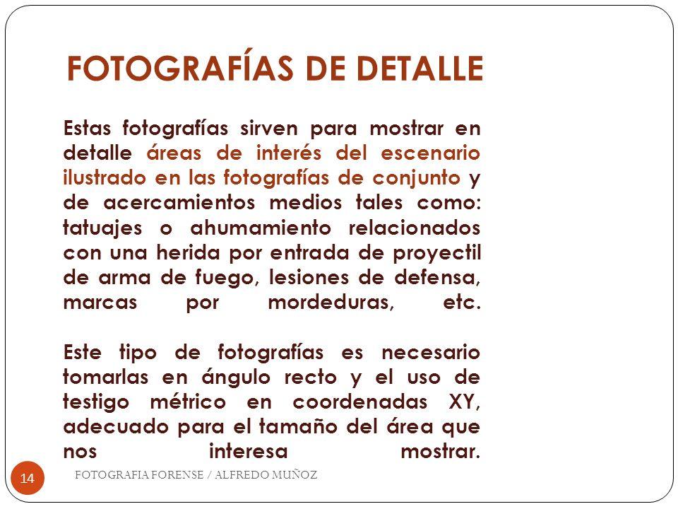 FOTOGRAFÍAS DE DETALLE