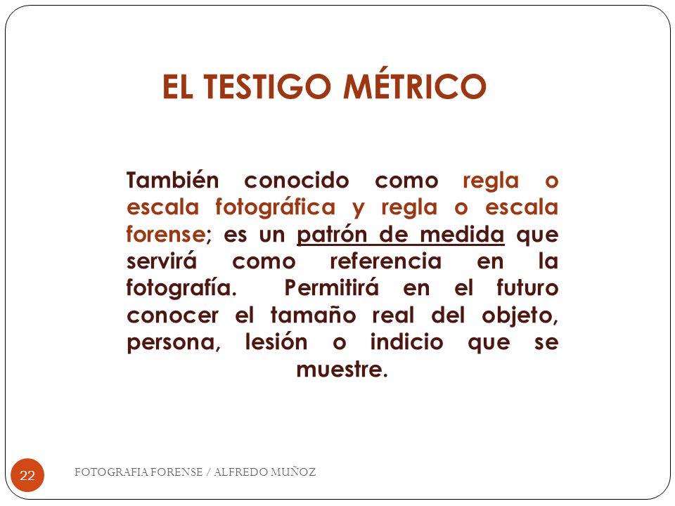 EL TESTIGO MÉTRICO