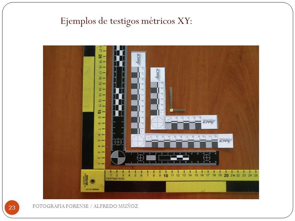 Ejemplos de testigos métricos XY: