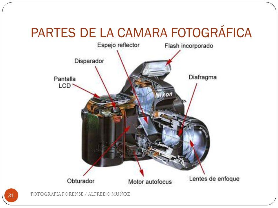 PARTES DE LA CAMARA FOTOGRÁFICA