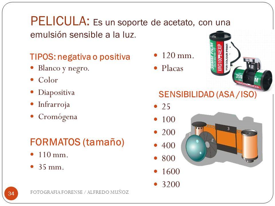 SENSIBILIDAD (ASA /ISO)