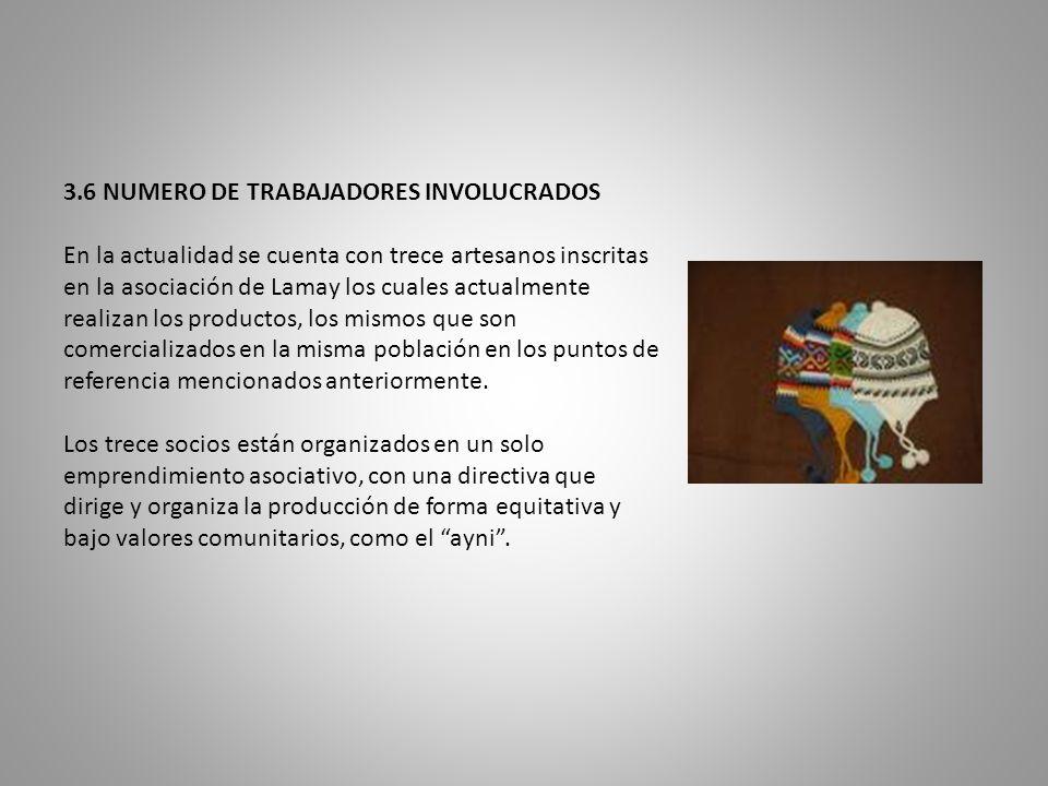 3. 6 NUMERO DE TRABAJADORES INVOLUCRADOS