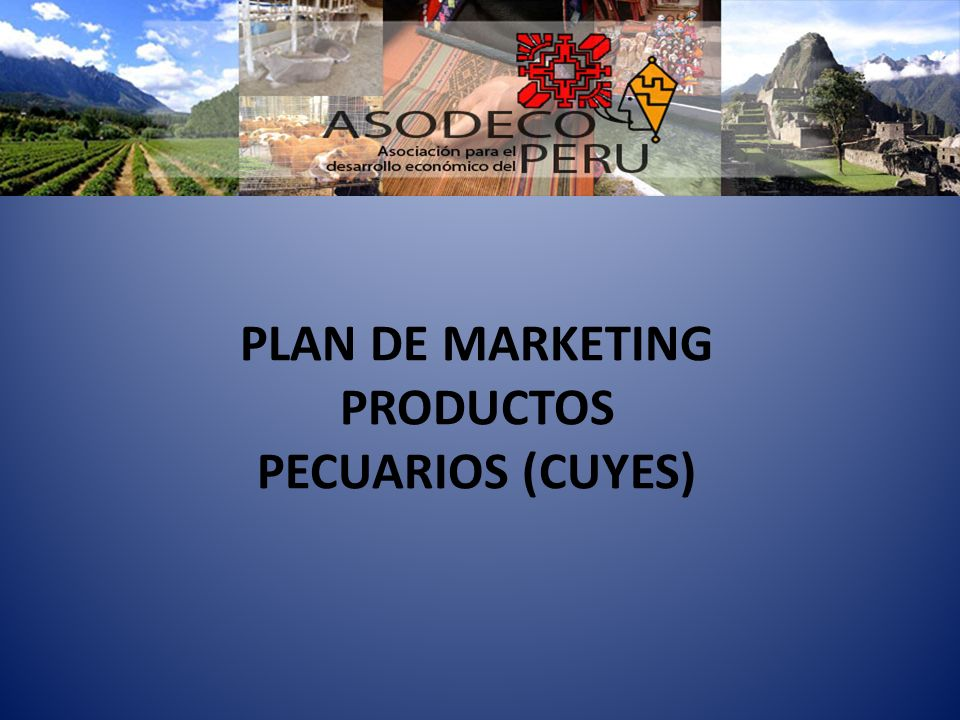 PLAN DE MARKETING PRODUCTOS PECUARIOS (CUYES)