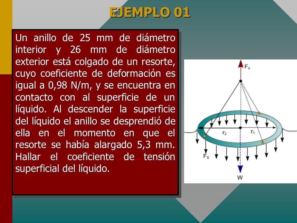 EJEMPLO 01