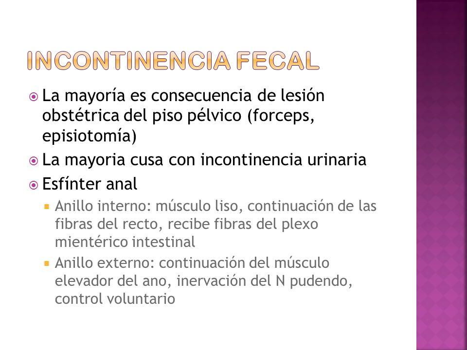 Incontinencia fecal La mayoría es consecuencia de lesión obstétrica del piso pélvico (forceps, episiotomía)
