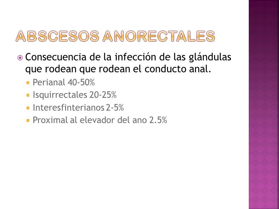 Abscesos anorectales Consecuencia de la infección de las glándulas que rodean que rodean el conducto anal.