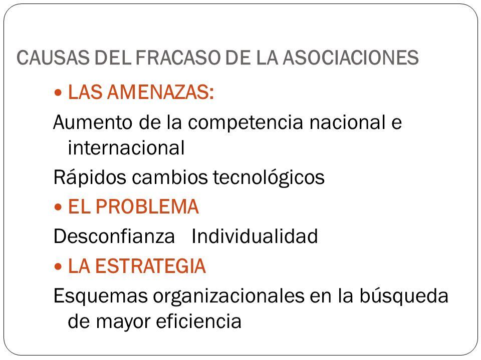 CAUSAS DEL FRACASO DE LA ASOCIACIONES