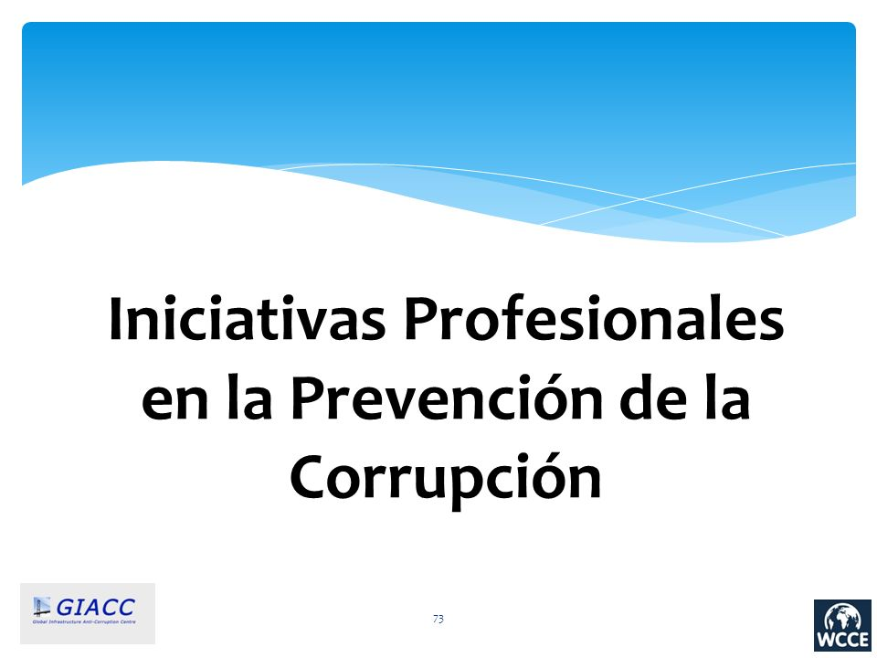 Iniciativas Profesionales en la Prevención de la Corrupción