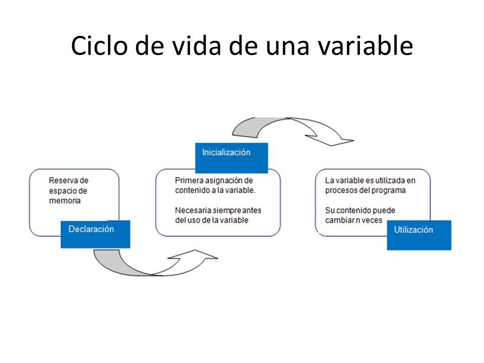 Ciclo de vida de una variable
