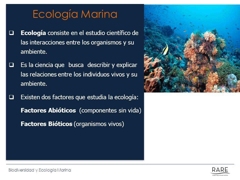 Ecología Marina Ecología consiste en el estudio científico de las interacciones entre los organismos y su ambiente.