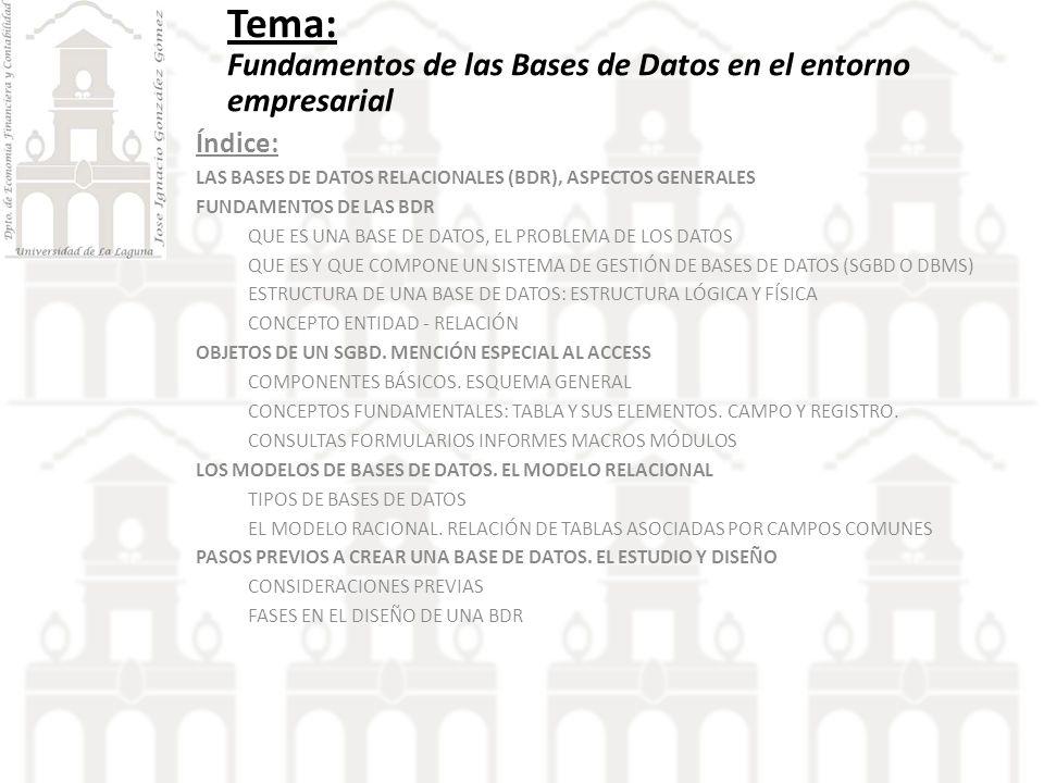 Tema: Fundamentos de las Bases de Datos en el entorno empresarial