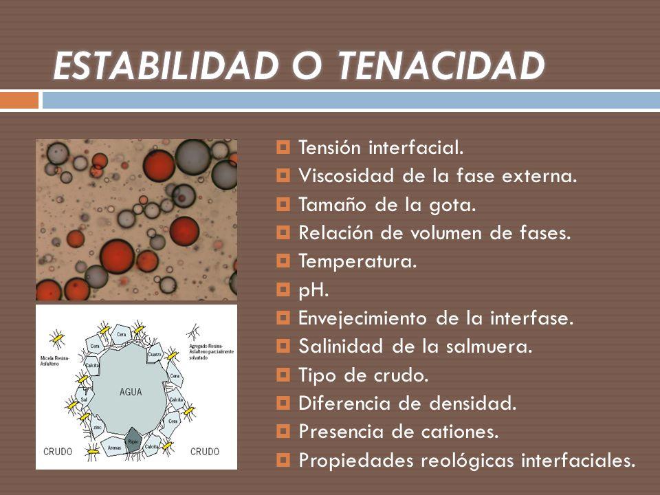 ESTABILIDAD O TENACIDAD