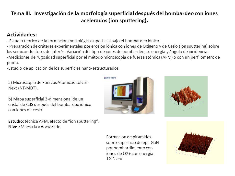 Tema III. Investigación de la morfología superficial después del bombardeo con iones acelerados (ion sputtering).