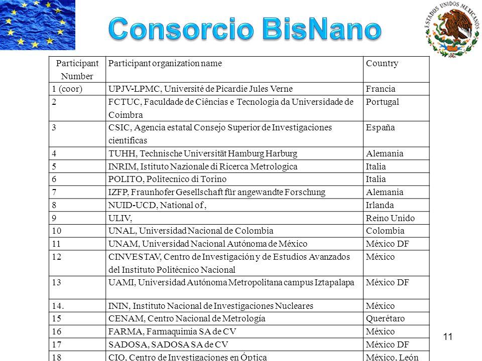 Consorcio BisNano Participant Number Participant organization name