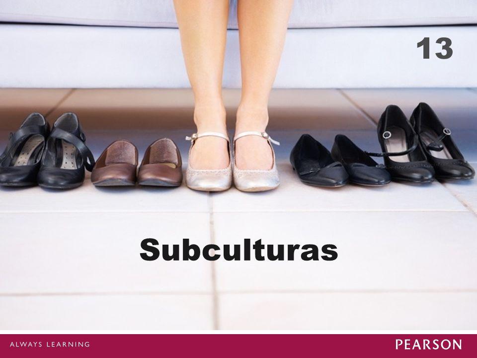 13 Subculturas