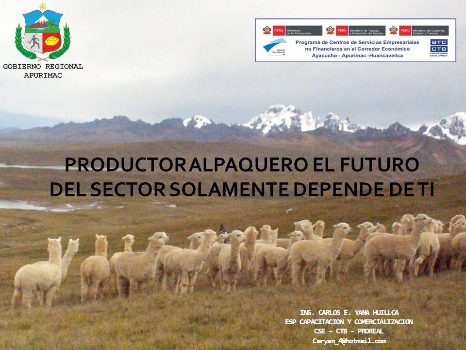 PRODUCTOR ALPAQUERO EL FUTURO DEL SECTOR SOLAMENTE DEPENDE DE TI