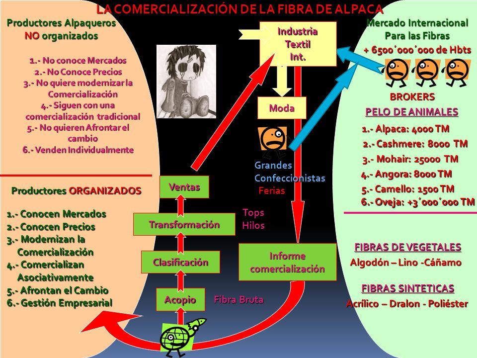 LA COMERCIALIZACIÓN DE LA FIBRA DE ALPACA