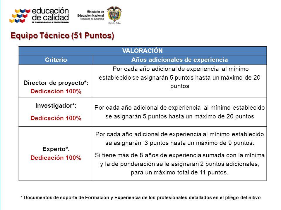 Años adicionales de experiencia Director de proyecto*: Dedicación 100%