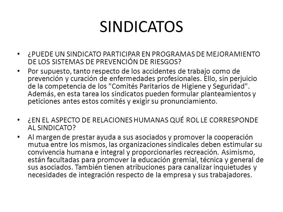 SINDICATOS ¿PUEDE UN SINDICATO PARTICIPAR EN PROGRAMAS DE MEJORAMIENTO DE LOS SISTEMAS DE PREVENCIÓN DE RIESGOS