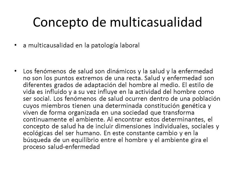 Concepto de multicasualidad